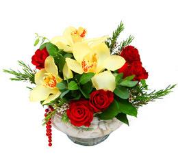 Sinop çiçekçi mağazası  1 kandil kazablanka ve 5 adet kirmizi gül