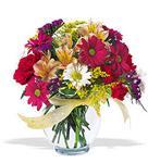 Sinop çiçekçiler  cam yada mika vazo içerisinde karisik kir çiçekleri