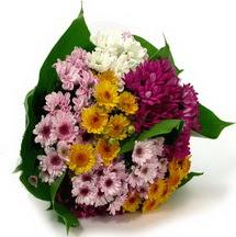 Sinop çiçek siparişi sitesi  Karisik kir çiçekleri demeti herkeze