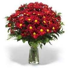 Sinop hediye çiçek yolla  Kir çiçekleri cam yada mika vazo içinde