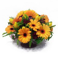 gerbera ve kir çiçek masa aranjmani  Sinop anneler günü çiçek yolla