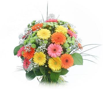 13 adet gerbera çiçegi buketi  Sinop hediye sevgilime hediye çiçek