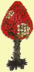 Sinop çiçekçi mağazası  dügün açilis çiçekleri  Sinop online çiçekçi , çiçek siparişi