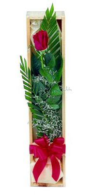 1 adet kutuda kirmizi gül  Sinop ucuz çiçek gönder