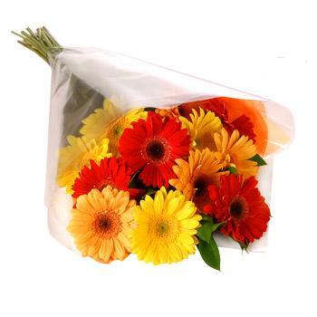 Karisik renklerde gerbera buketi  Sinop çiçek servisi , çiçekçi adresleri
