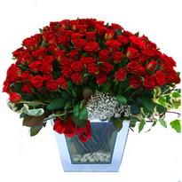 Sinop uluslararası çiçek gönderme   101 adet kirmizi gül aranjmani