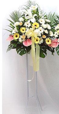 Sinop hediye sevgilime hediye çiçek   perförje çiçegi dügün çiçekleri