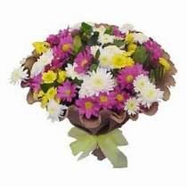 Sinop çiçek siparişi sitesi  Mevsim kir çiçegi demeti