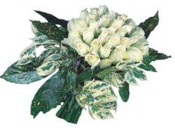 Sinop 14 şubat sevgililer günü çiçek  9 Beyaz gül Özel kisiler için