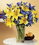 Sinop güvenli kaliteli hızlı çiçek  Lilyum ve mevsim  çiçegi özel