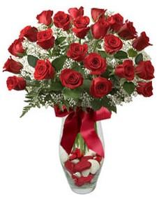 17 adet essiz kalitede kirmizi gül  Sinop İnternetten çiçek siparişi