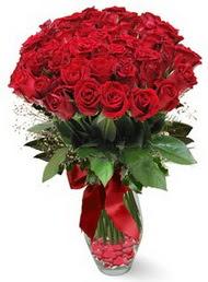19 adet essiz kalitede kirmizi gül  Sinop kaliteli taze ve ucuz çiçekler