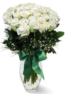 19 adet essiz kalitede beyaz gül  Sinop uluslararası çiçek gönderme