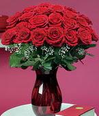 Sinop online çiçekçi , çiçek siparişi  11 adet Vazoda Gül sevenler için ideal seçim