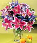 Sinop İnternetten çiçek siparişi  Sevgi bahçesi Özel  bir tercih