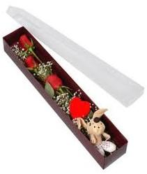 kutu içerisinde 3 adet gül ve oyuncak  Sinop çiçek servisi , çiçekçi adresleri