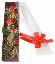kutu içinde 5 adet kirmizi gül  Sinop 14 şubat sevgililer günü çiçek