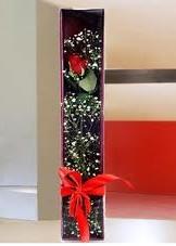kutu içinde tek kirmizi gül  Sinop online çiçekçi , çiçek siparişi
