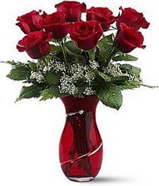 Vazo içinde 8 adet kirmizilar içinde güller  Sinop 14 şubat sevgililer günü çiçek