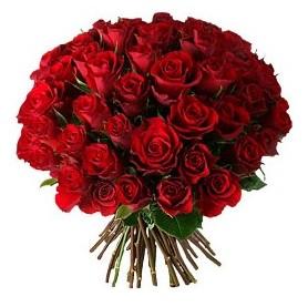 Sinop çiçekçiler  33 adet kırmızı gül buketi