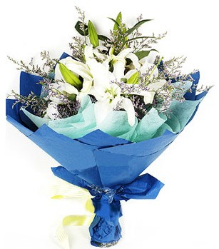 Sinop güvenli kaliteli hızlı çiçek  4 adet dal kazablankadan görsel buket