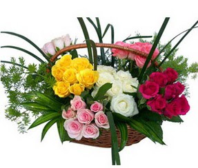 Sinop internetten çiçek siparişi  35 adet rengarenk güllerden sepet tanzimi