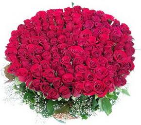 Sinop çiçekçi telefonları  100 adet kırmızı gülden görsel buket