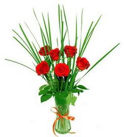 Sinop çiçekçiler  6 adet kırmızı güllerden vazo çiçeği