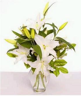 Sinop çiçekçi mağazası  2 dal cazablanca vazo çiçeği