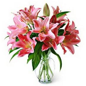 3 dal kazablanka görsel vazosu  Sinop 14 şubat sevgililer günü çiçek