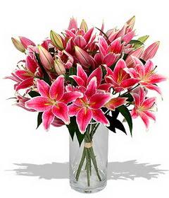 4 dal cazablanca görsel vazosu  Sinop online çiçek gönderme sipariş