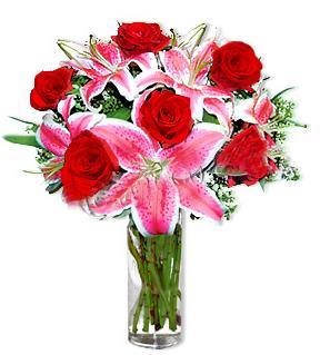 Sinop hediye çiçek yolla  1 dal cazablanca ve 6 kırmızı gül çiçeği