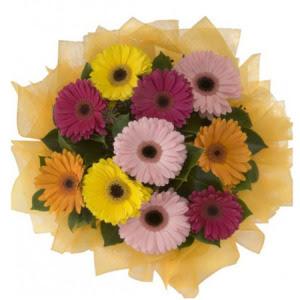 Sinop çiçek , çiçekçi , çiçekçilik  11 adet karışık gerbera çiçeği buketi