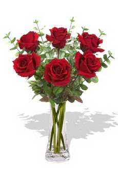 Sinop online çiçek gönderme sipariş  6 kırmızı gül vazosu