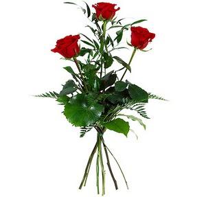 Sinop çiçek mağazası , çiçekçi adresleri  3 adet kırmızı gülden buket