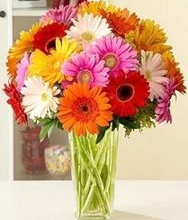 Sinop çiçek yolla , çiçek gönder , çiçekçi   15 adet gerbera çiçek vazosu
