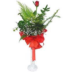 Sinop güvenli kaliteli hızlı çiçek  Cam vazoda masum tek gül