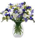 Sinop çiçek gönderme  Vazoda karisik özel frezyalar