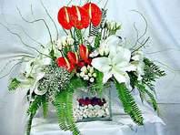 Sinop İnternetten çiçek siparişi  Anthurim Kazablanka  gül