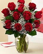 Sevgilime hediye 9 adet 1.ci kalite gül  Sinop güvenli kaliteli hızlı çiçek