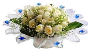 Sinop online çiçekçi , çiçek siparişi  11 adet Beyaz güller özel cam tanzim