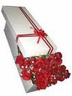 Sinop çiçek siparişi sitesi  11 adet 1.kalite magnum güller