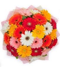 15 adet renkli gerbera buketi  Sinop çiçek gönderme