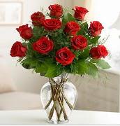 Vazo içerisinde 12 kırmızı gül  Sinop internetten çiçek satışı