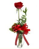 vazo içerisinde 1 adet kırmızı gül  Sinop çiçek siparişi sitesi