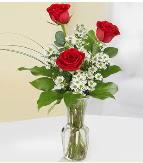 Vazo içerisinde 3 adet kırmızı gül  Sinop internetten çiçek satışı