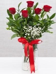 cam vazo içerisinde 5 adet kırmızı gül  Sinop çiçek servisi , çiçekçi adresleri