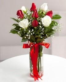 5 kırmızı 4 beyaz gül vazoda  Sinop çiçek servisi , çiçekçi adresleri