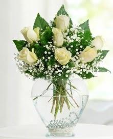 Cam içerisinde 7 adet beyaz gül  Sinop çiçek servisi , çiçekçi adresleri