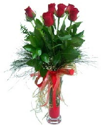 vazo içerisinde 5 kırmızı gül  Sinop çiçek yolla